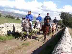 passeggiata a cavallo 2