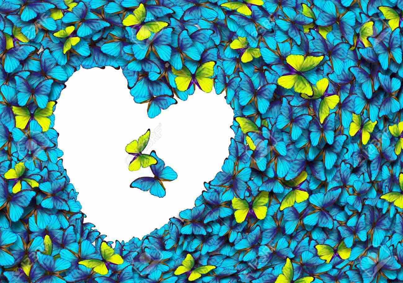 """""""Ali di farfalle"""", la poesia di Pina Magro: una dedica al marito, un inno al grande amore"""