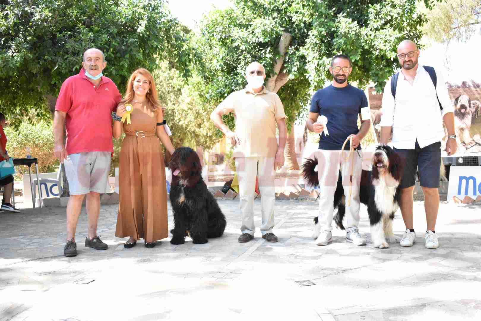 """Raduno nazionale di """"spino degli Iblei"""": è la prima volta a Rosolini grazie a """"Frida"""""""