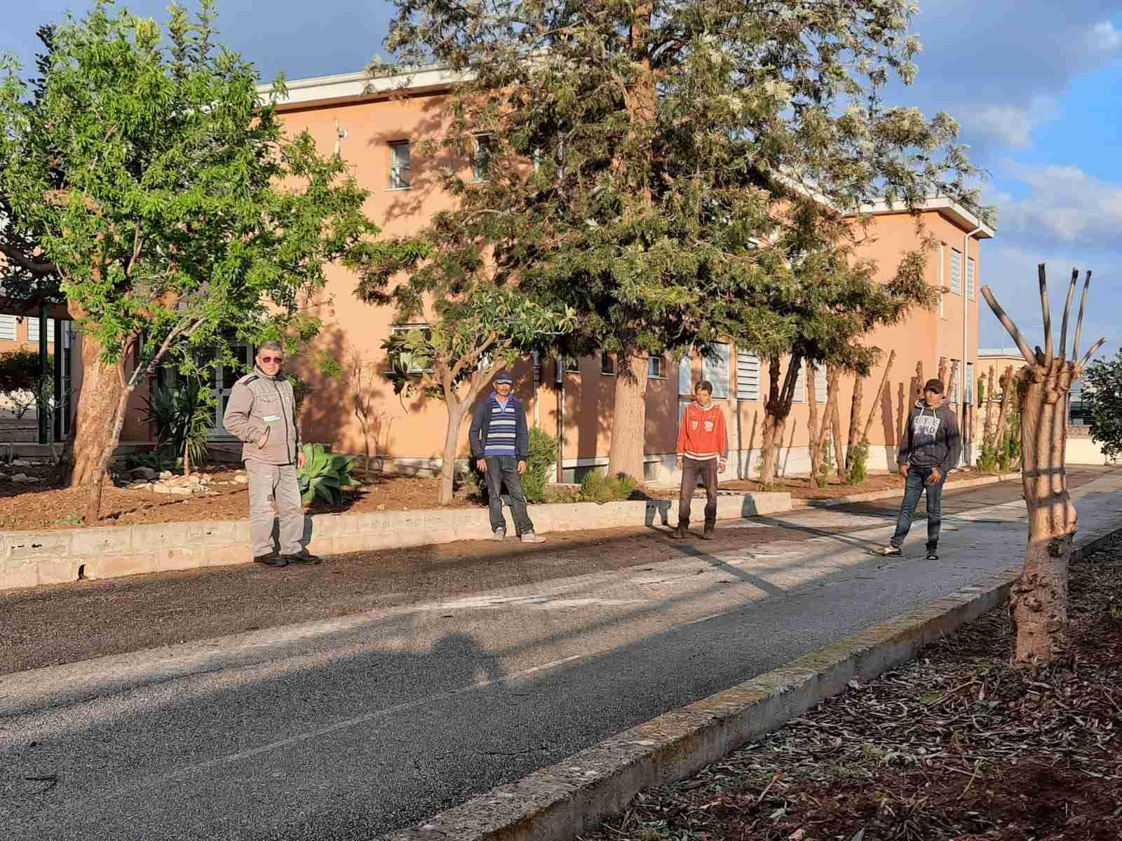 Manutenzione del verde pubblico nelle piazze e nelle scuole, il Comune rinnova la convenzione con Città Verde